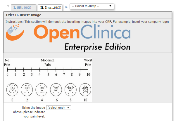 Inserting an image - using HTML tags in OpenClinica